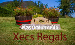 Mas Gift Voucher Ombravella Rural Apartments in Mieres Garrotxa